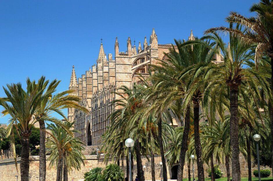 La cathédrale de Palma de Majorque derrière une rangée de palmiers.