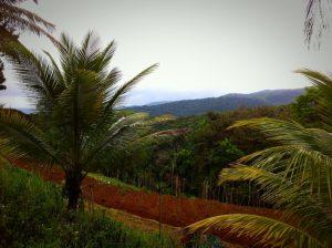 Vue de l'île de Basse-Terre à la Guadeloupe.