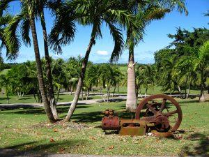 Vue d'une distillerie à la Guadeloupe.