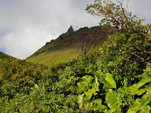Vue de la montagne de la Soufrière à la Guadeloupe.