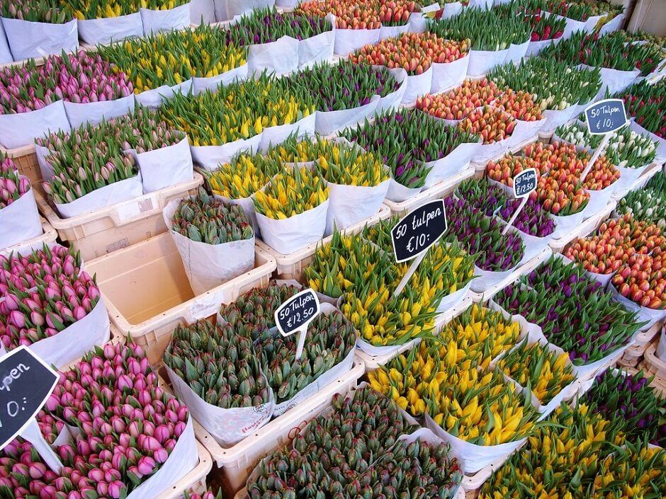 Vue de bouquets de fleurs à Amsterdam.