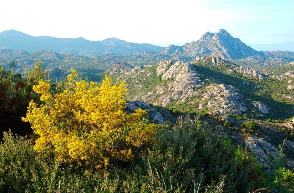 Vue d'un plateau de montagne en Corse.