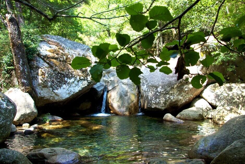 Vue d'une petite cascade dans la forêt en Corse.