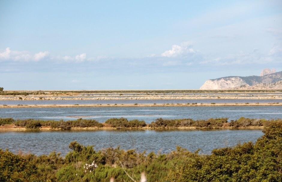 Vue du parc naturel de Ses Salines à Ibiza.
