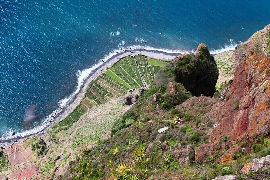 Vue plongeante sur la mer depuis une falaise de l'île de Madère.