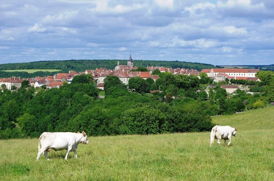Vue du village de Flavigny-sur-Ozerain en Bourgogne.
