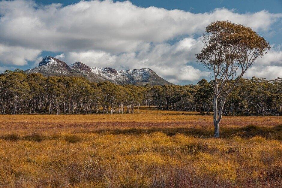 Vue d'un parc national en Tasmanie en Australie.