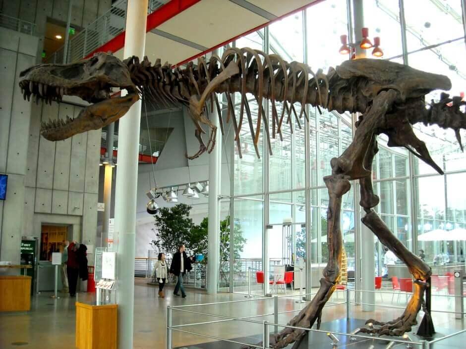 Un dinosaure à San Francisco.