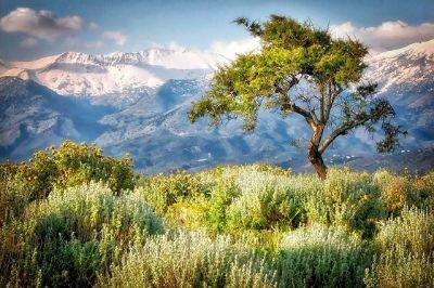 Vue d'une montagne en Crète.