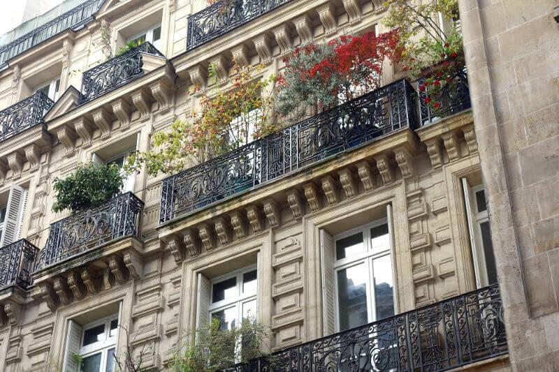 Plantes sur un balcon à Paris.