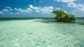 Lagon en Guadeloupe.