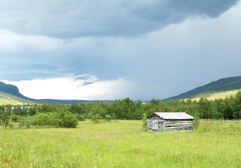 Prairie en Laponie.