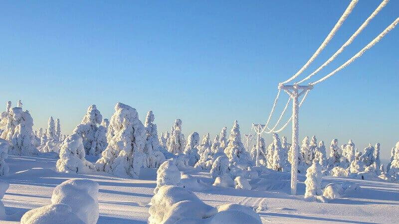 Neige en Laponie.