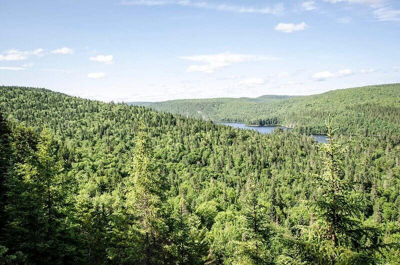 Vue du parc national de la Mauricie au Québec.