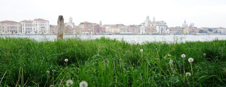 Églises et palais de Venise.
