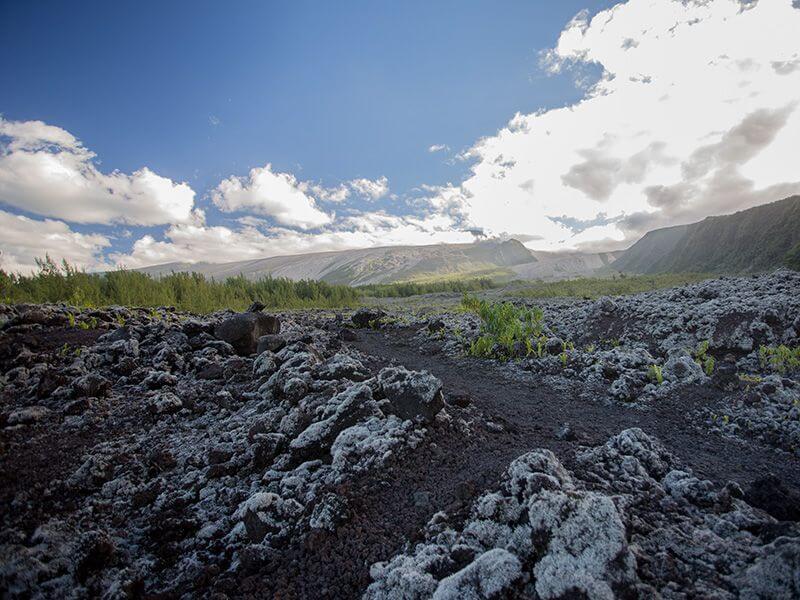 Un champ de lave à La Réunion.
