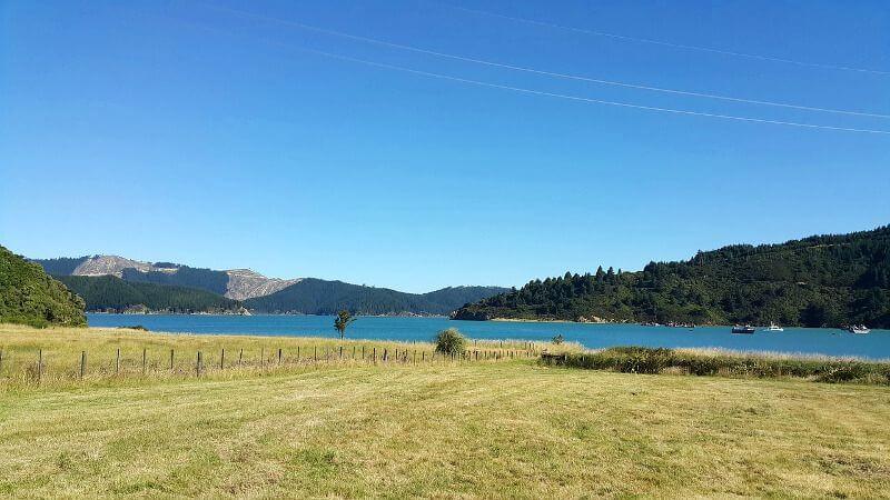 Pré et lac en Nouvelle-Zélande.