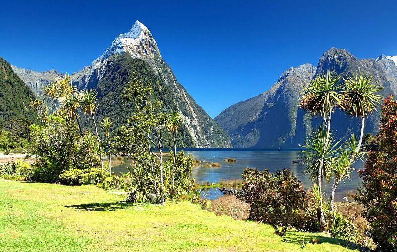Un fjord en Nouvelle-Zélande.