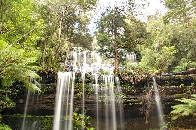 Une cascade en Tasmanie.