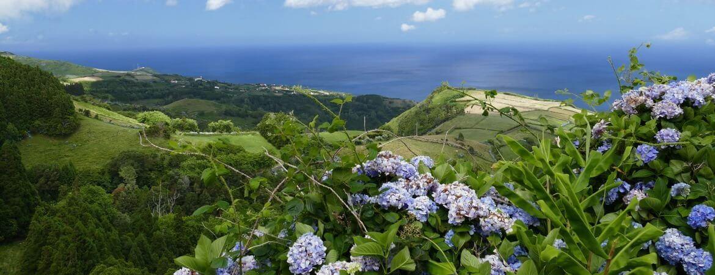 Vue panoramique d'une île des Açores.