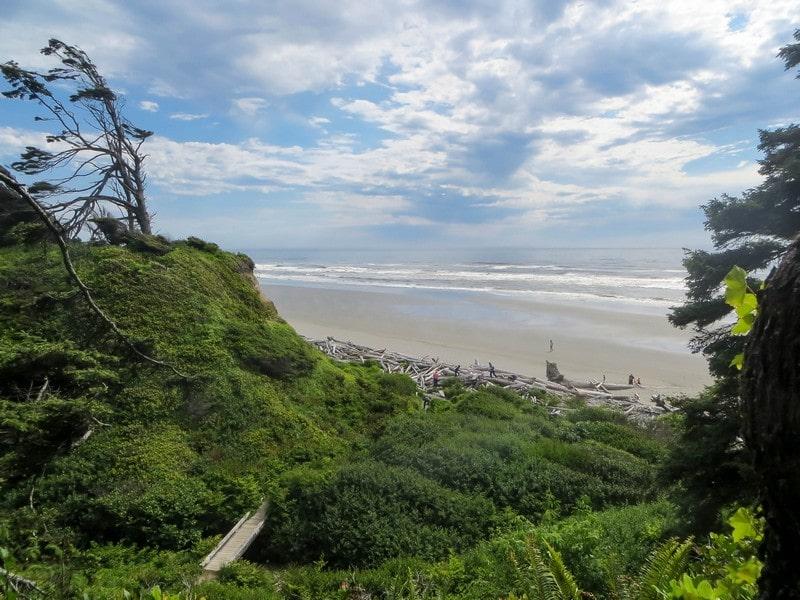 Une plage sauvage aux USA.