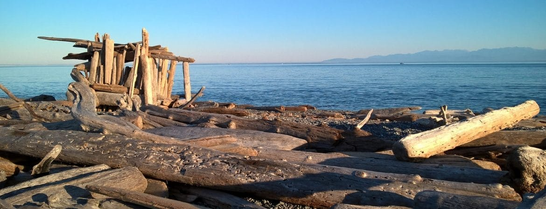 Une plage abandonnée aux USA.
