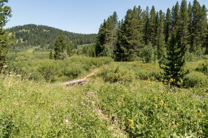 Un chemin de randonnée dans le parc national de Grand Teton.