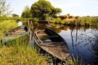 Barques dans le Parc naturel régional de Brière