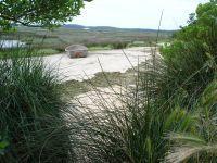 Vur sur la Réserve naturelle de Tomboli di Cecina à travers les herbes