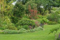 Petits arbres du jardins du Kestellic