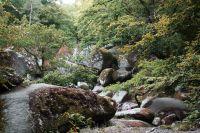 Sentier à travers les rochers dans le Parc Régional d'Armorique