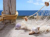 Filet de pêche et coquillages