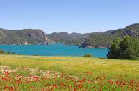 Pairie face au Lac du Gabas