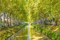 Vue sur le Canal du Midi